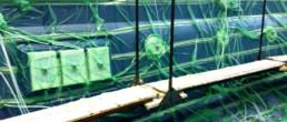 fibra di carbonio Friuli Venezia Giulia; Infusione scafo; infusione materiali compositi; infusion process